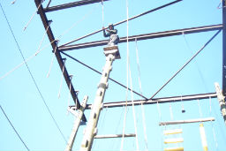 Secondary school high ropes course