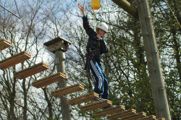High Ropes 6 online