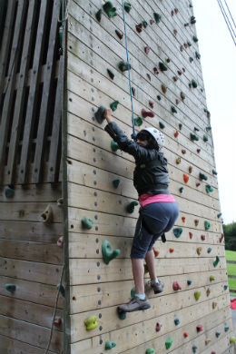climbing tower 3 online